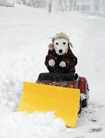 RESIDENTIAL SNOW REMOVAL - SPECIAL SENIORS RATES