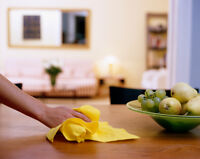 DETAIL ORIENTED CLEANING LADY  $25/hr