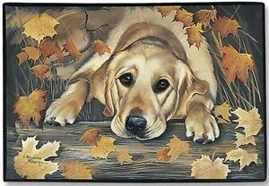 Labrador Retriever doormats:Chocolate Lab, Yellow Lab, Black Lab