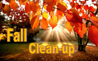 Fall Leaves Clean Up, De Thatching Raking, Leaf Blowing, Removal