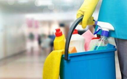 Exceptional Cleaner/Baby Sitter looking for casual/part time work Clarkson Wanneroo Area Preview