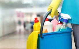 Cleaner Needed - 3 Hours Per Week
