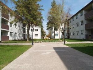 3 Bedroom Apartment Available July 1