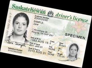 Driving classes  Regina Regina Area image 1