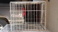 Wire collapsible dog crate