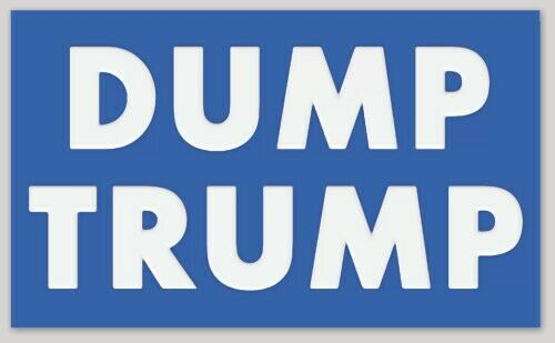 DUMP TRUMP BUMPER STICKER DECAL ANTI DONALD TRUMP PRESIDENT 2020 DEMOCRAT BIDEN