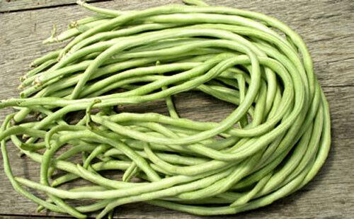 20PCS Asian Long Bean Seeds 3 Colors High Germination Large Harvest Snake Beans
