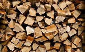 Cut and Split firewood/ 185/cord
