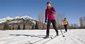 WANTED: Cross Country Ski Equipment