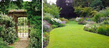 Lawn mowing & odd gardening jobs