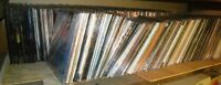 Laserdisc Collection of 326 Titles for Sale