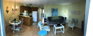 Furnished 1 BDR condo Feb to May: inc.,dishes,towels and bedding