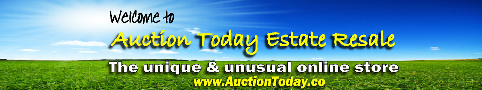 www.AuctionToday.co