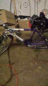 Raleigh Sport Mountain Bike