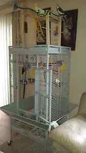 Very Large cage with 2 Cockatiels Cambridge Kitchener Area image 5