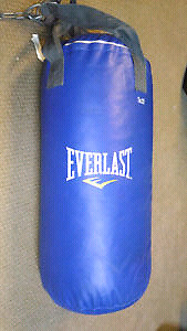 SAC DE BOXE PUNCHING BAG MARQUE EVERLAST 25LBS