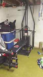 YORK 2001 FULL EXERCISE STATION--REDUCED TO $100.00 Kitchener / Waterloo Kitchener Area image 1