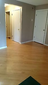 2BR Basement.Free: WIFI,Parking,Laundry,Utilities,Spacious.save$