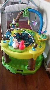 Baby Swing and Tropical Exersaucer