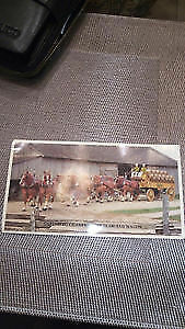 Antique team and wagon color postcard