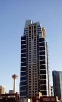 Downtown Newer Highrise Condo for sale -ALURA