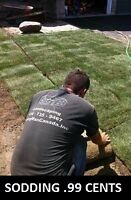 1Sodding Sod Installation lawns lawn grass irrigation sprinklers