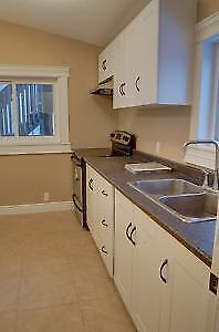 Newly Renovated 2 Bedroom Walking Distance to Google Jan 15th Kitchener / Waterloo Kitchener Area image 4