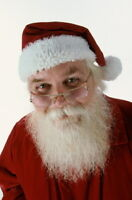 Santa with Real Beard for hire