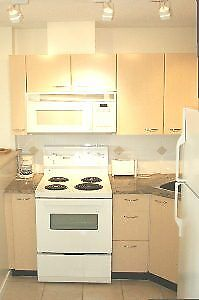 Downtown Vancouver furnished  12th floor Apt avail March 1st