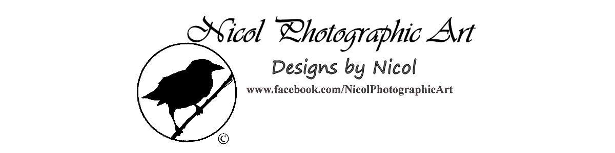 nicolphotographicart
