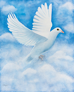 Dove - 24 x 32 x 1.75 - stretched canvas print