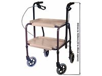 STURDY BRAKED WALKING TROLLEY