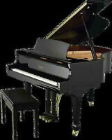 BABY GRAND/FULLY ACOUSTIC -CAN PLAY ITSELF FOR GUESTS