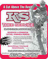 COMPLETE TREE CUTTING SERVICES 24 7