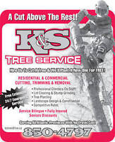 Tree Cutting Services----Fully Insured----Free Estimate----24/7