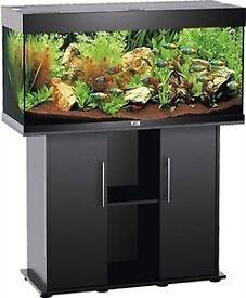 Juwel Rio 180 litre aquarium black