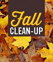 FALL CLEAN UP AND TREE REMOVAL