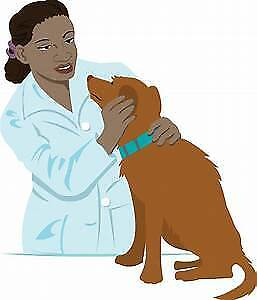 Veterinary Clinic For Sale