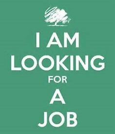 hi my name is reece i am looking for a job in any kind of job labour work or any thing like that