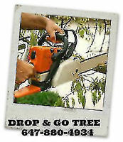 clean up service, tree removal  647-880-4934