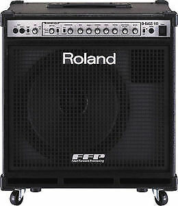 Roland D-Bass 115 Amplifier