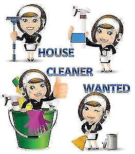 House cleaner wanted.