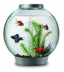Fish Tanks Fishbowls Aquariums Ebay
