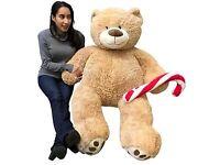 Looking for a XL Teddy Bear/ Soft toy