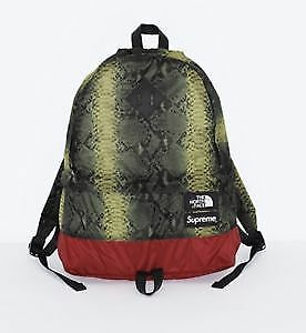 Supreme North Face Daypack Snakeskin