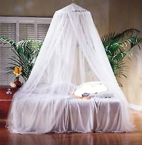 White bed canopy. AVAILABLE