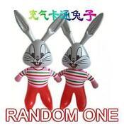 Rabbit Supplies