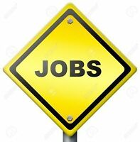 General Labour positions available