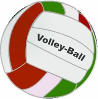Liberty Volley