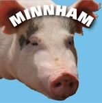 Minnham's Postcards Collectibles
